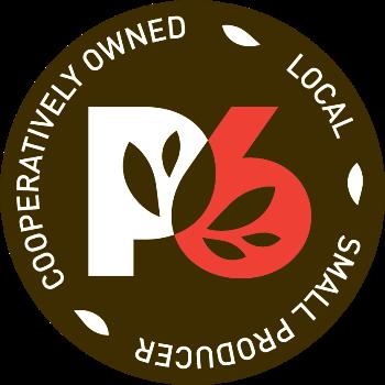 P6 Logo